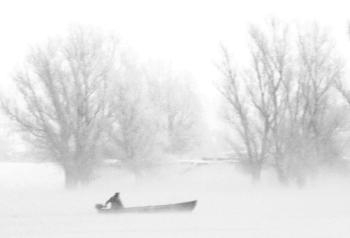 """""""Misty morning"""" Dobrogea - 2011"""