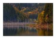 Autumn-colors - Gheorghe Popa