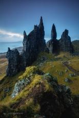 Fotografie natură - Horia Bogdan