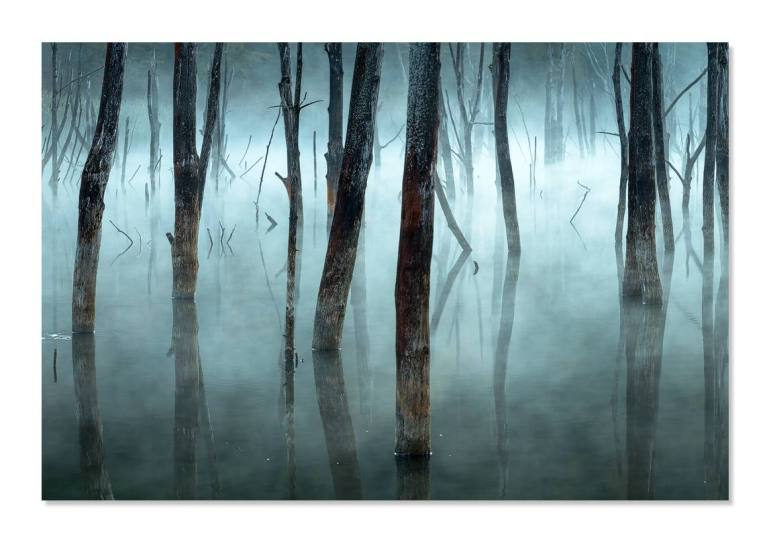 Cold and misty - Gheorghe Popa