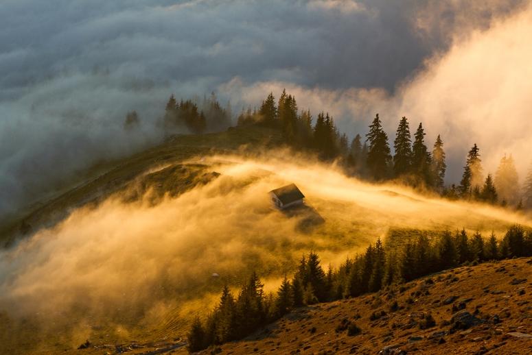 Fotografie preferată - Ioan Ovidiu Lazar