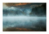 Mist on my lake - Gheorghe Popa