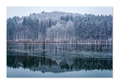 My-lake - Gheorghe Popa