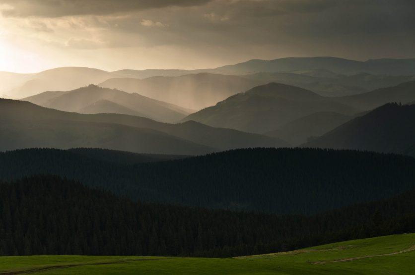 Fotografie - MIhaela Burlacu