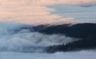morning-fog-crop-final