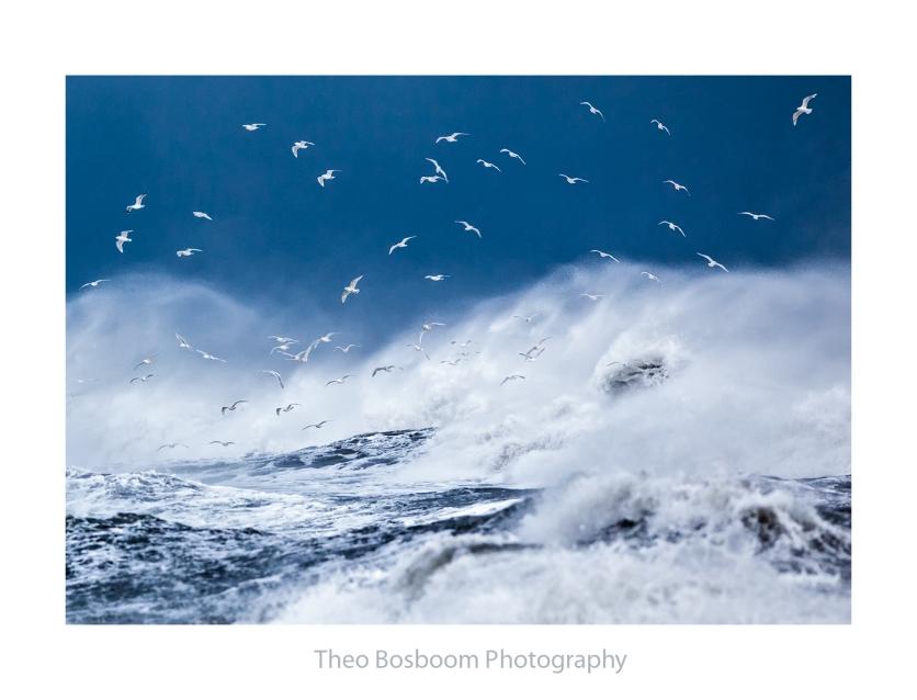 Theo Bosboom Storm at Vik Iceland
